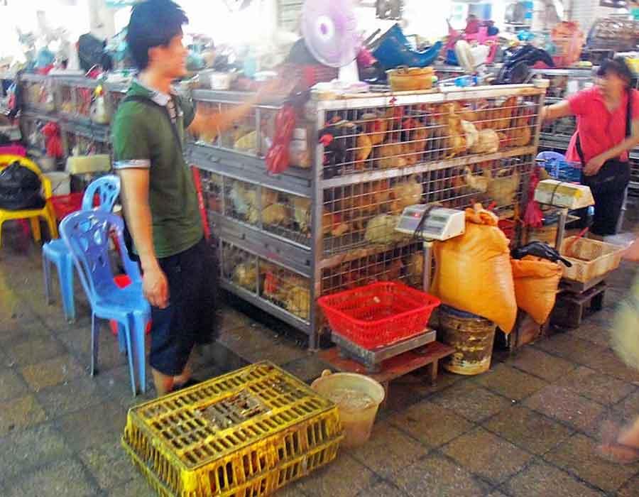 wet-market-china